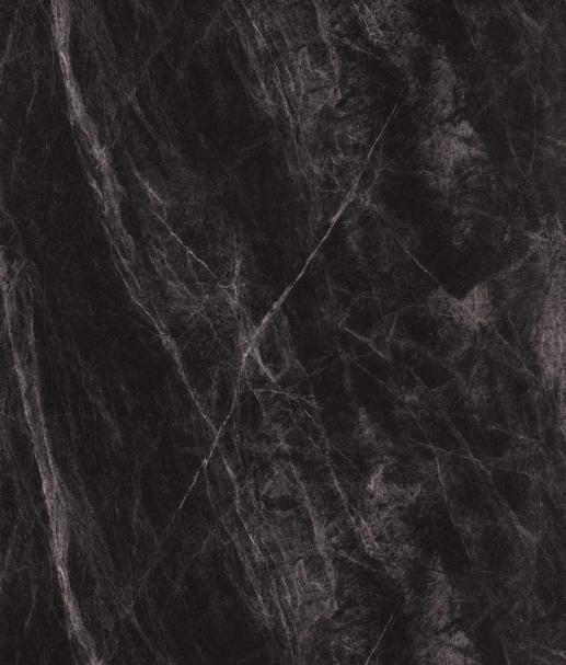 7377 黑云岩